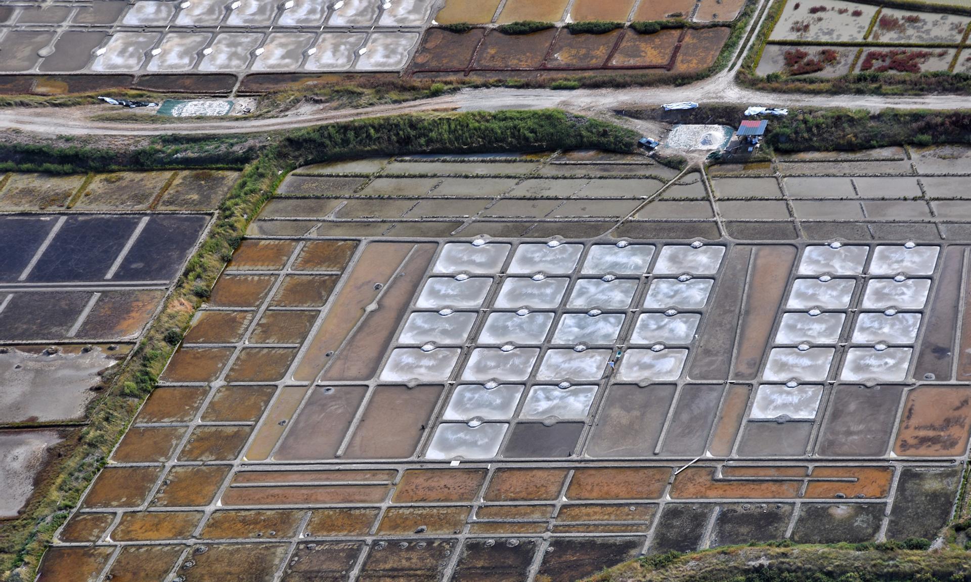 Saunier récoltant le sel dans les marais salants de Guérande