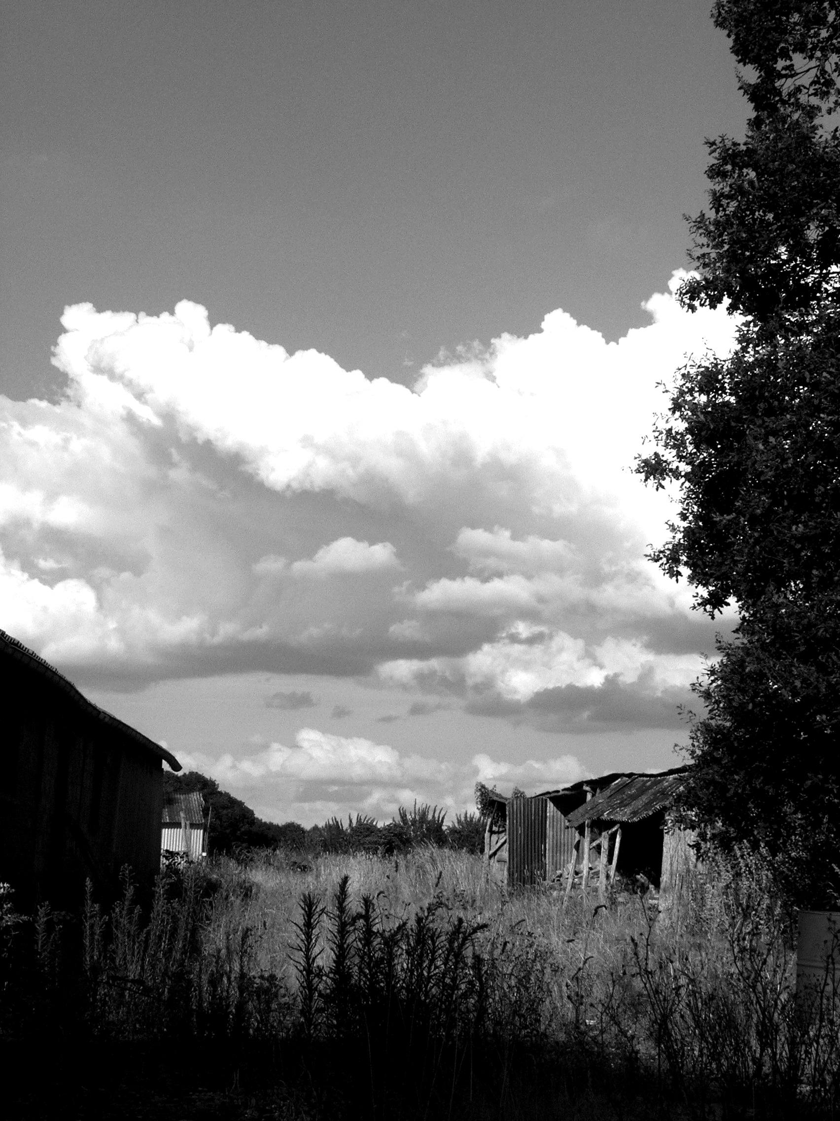"""""""Il n'est point de bonheur sans nuages.""""  Proverbe philosophique"""