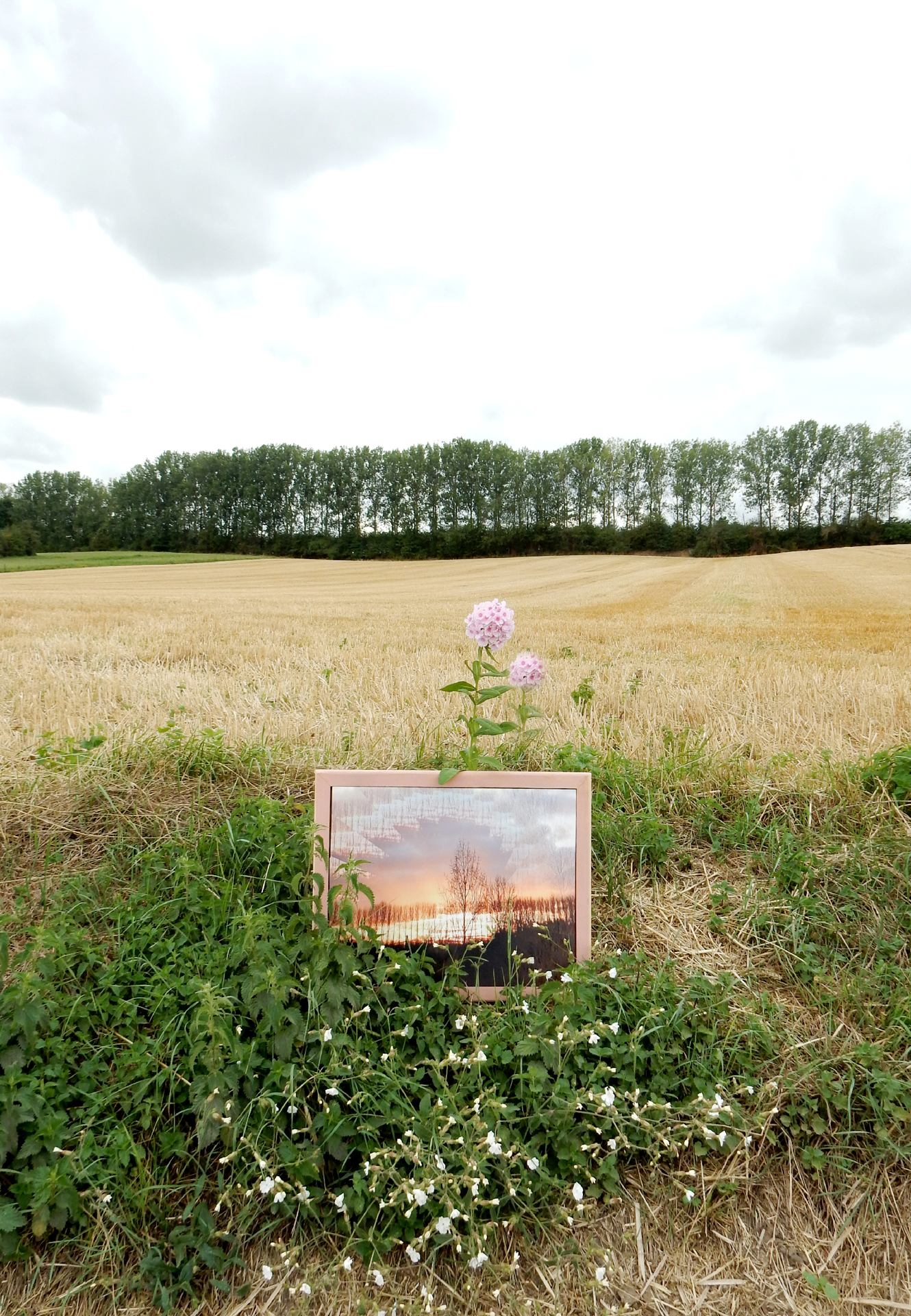 Land ART à la campagne