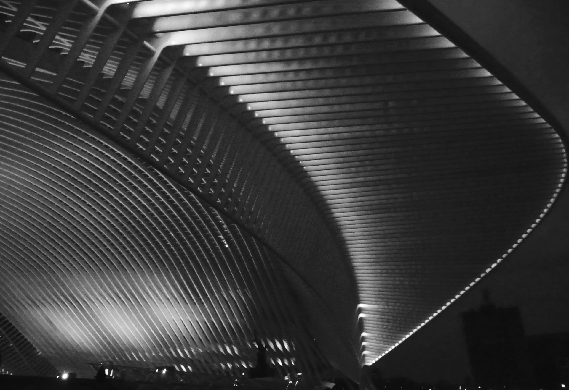 Gare de Liège Guillemins.
