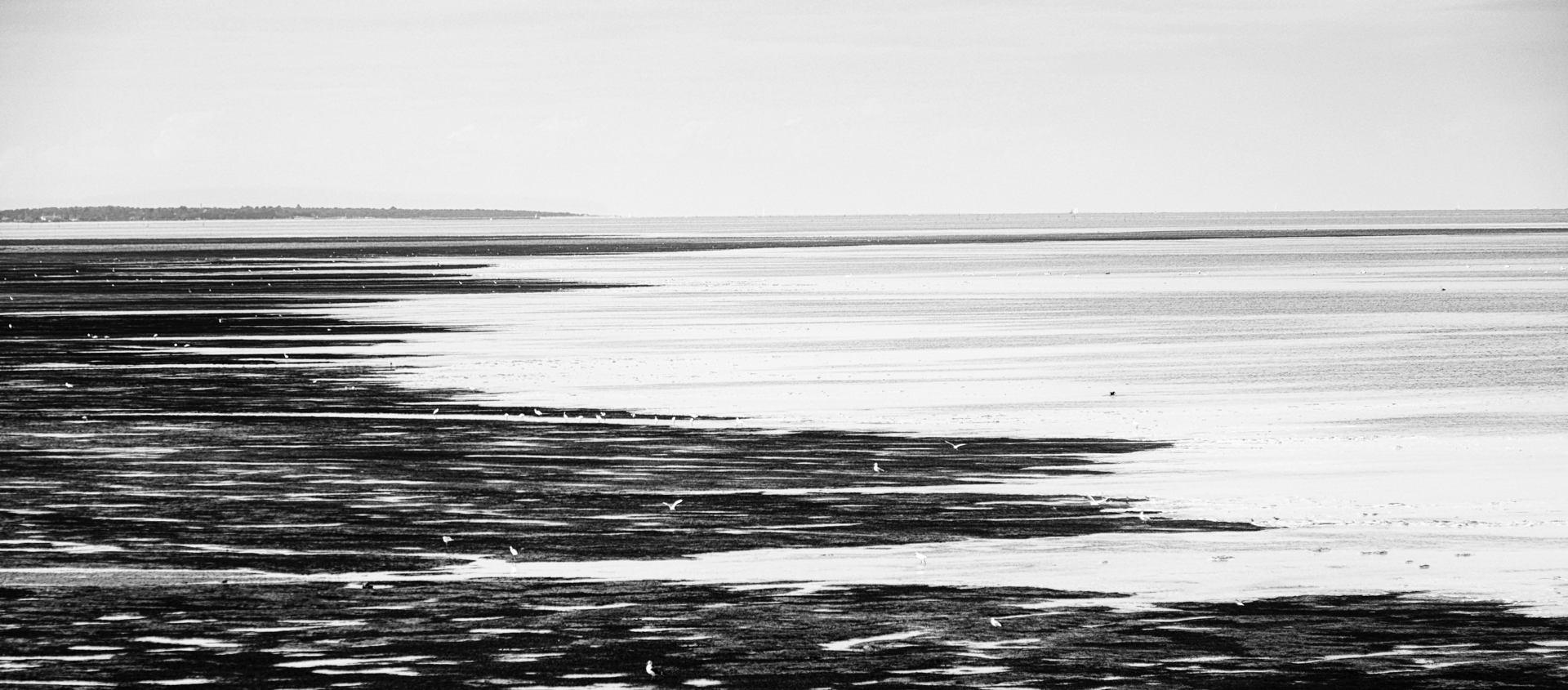 la marée