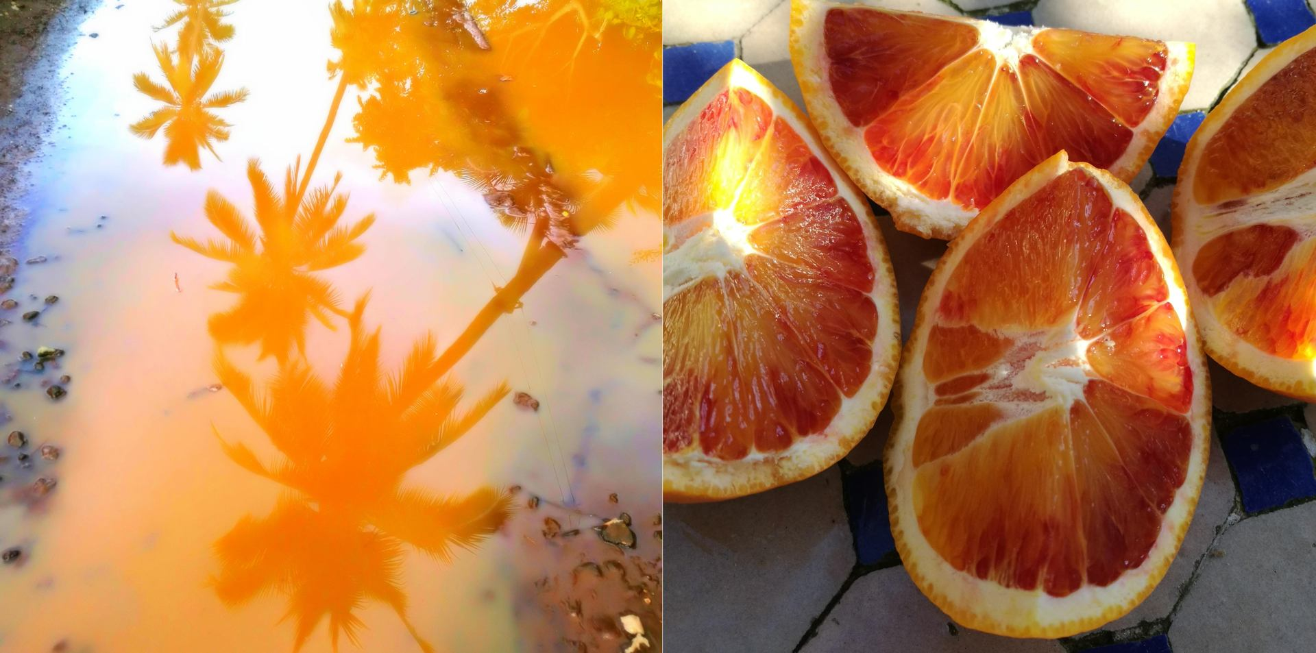 Symphonie Orange