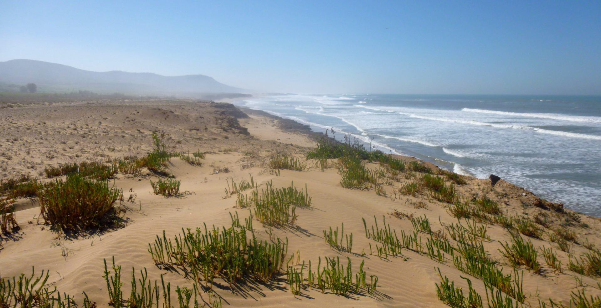 Sur la dune Infinie