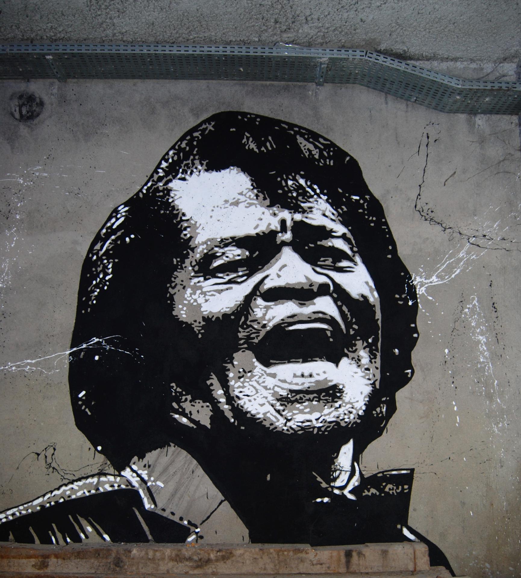 James Brown par Jef Aerosol