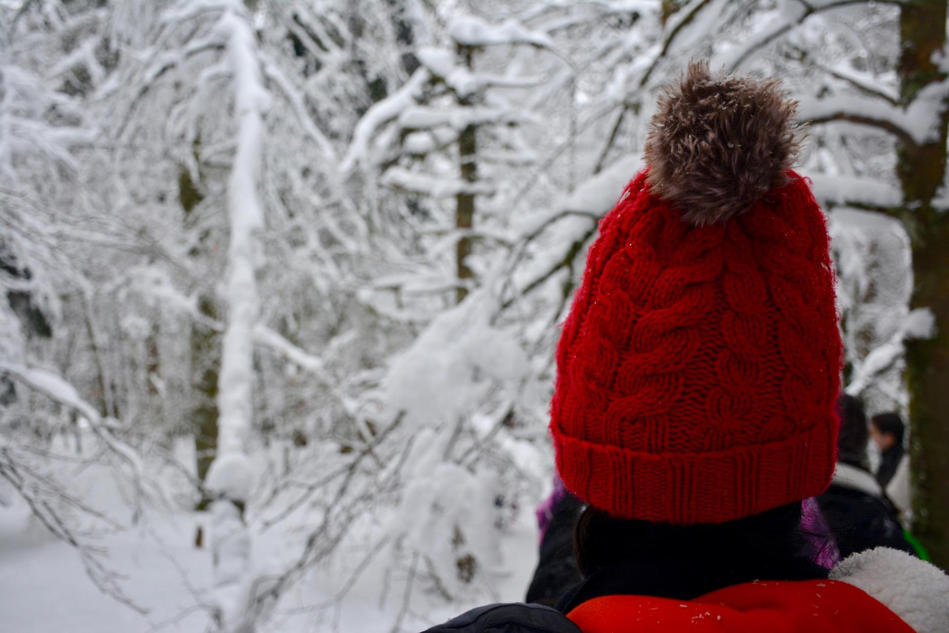 Bonnet des neiges