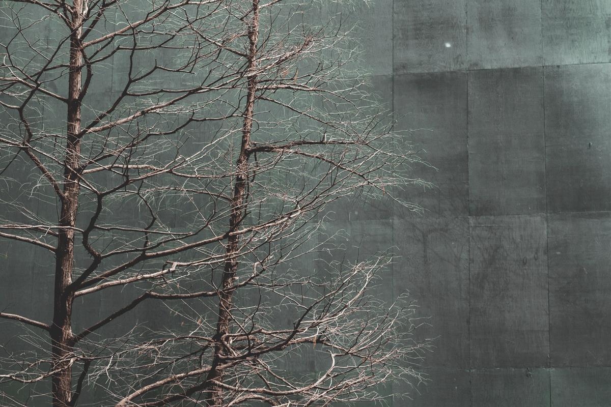 Manhattan tree