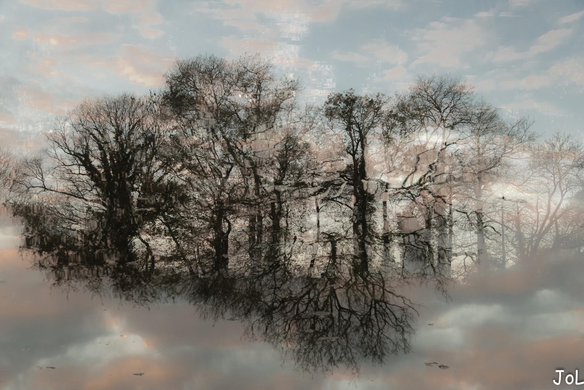 hiver et lumière sur l'étang (double exposition)