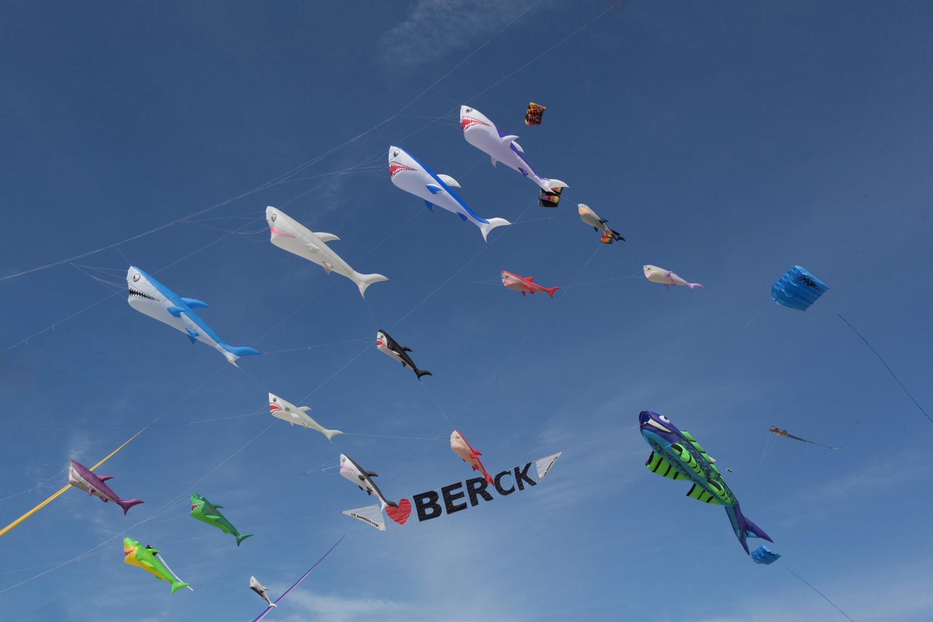 Festival du Cerf Volant Berck