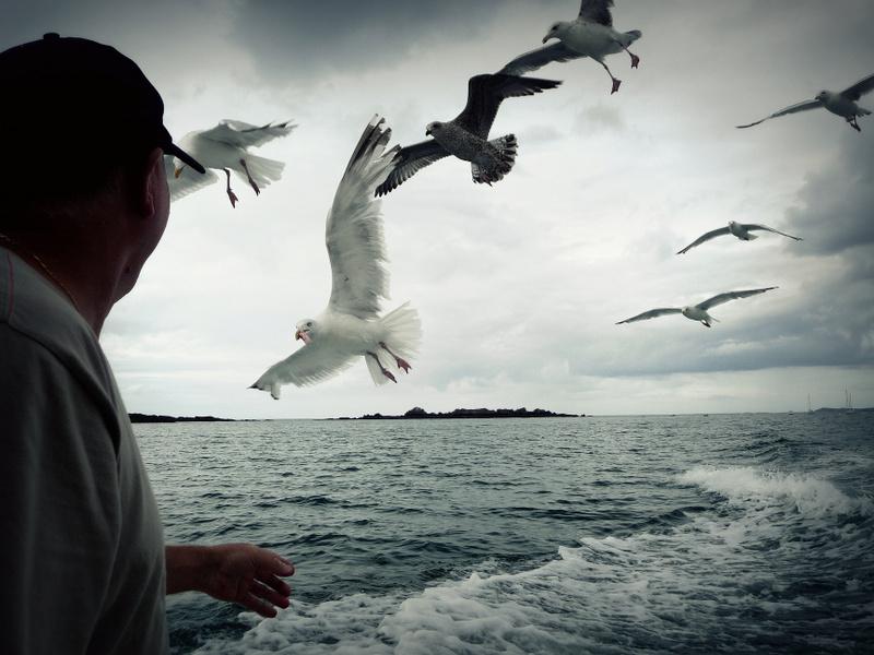 Homme libre, toujours tu chériras la mer.....