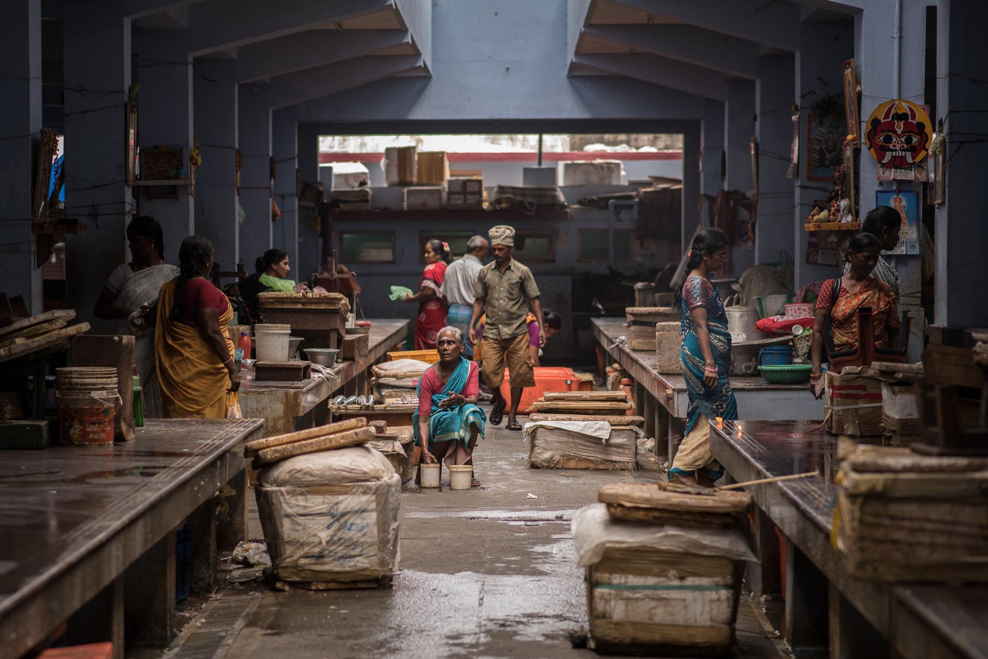 Le marché aux poissons - Inde