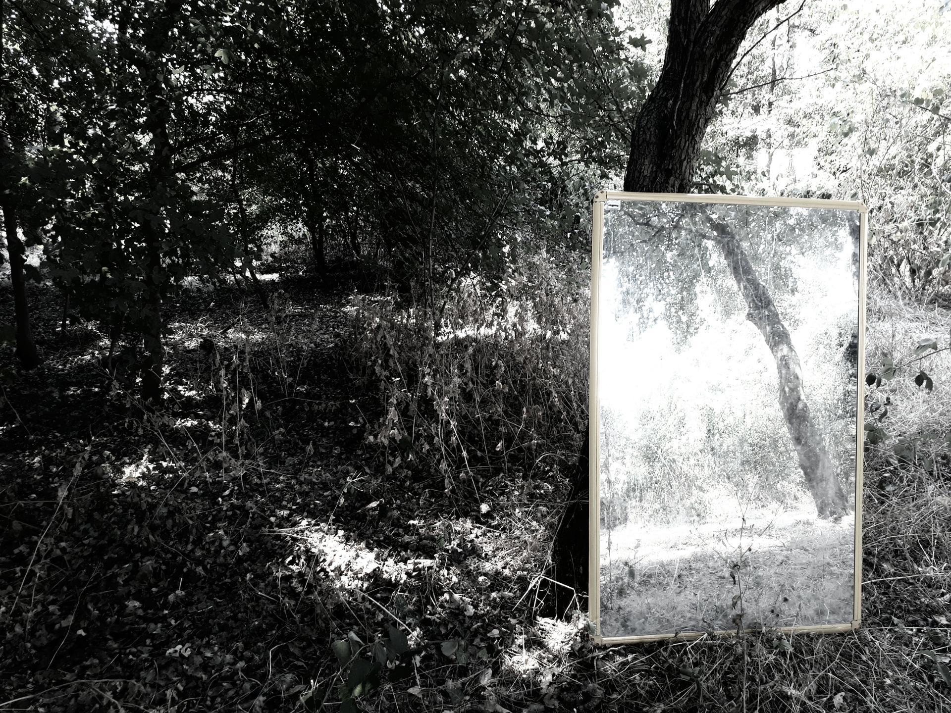 Mon reflet III.jpg