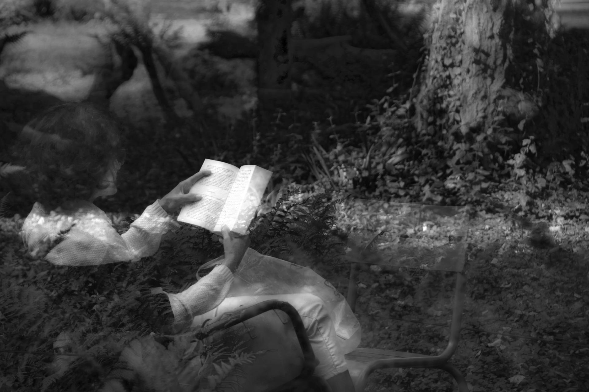 La lectrice.jpg