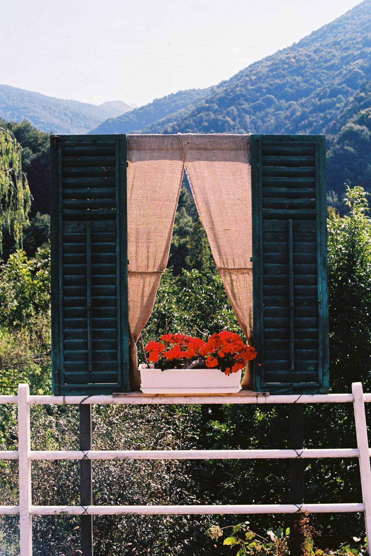 Garden with a view.JPG
