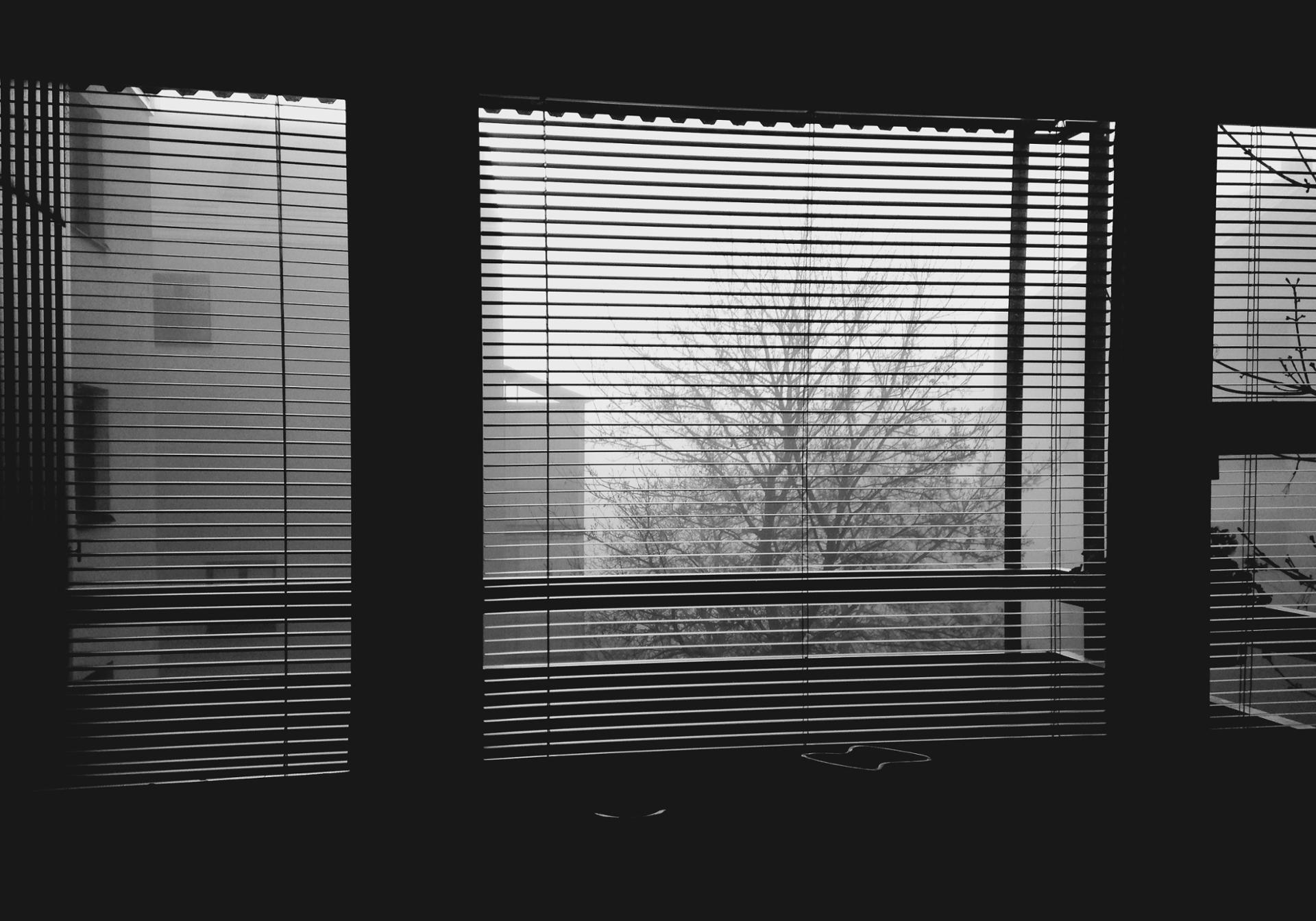 Les matins d'hiver en Suède