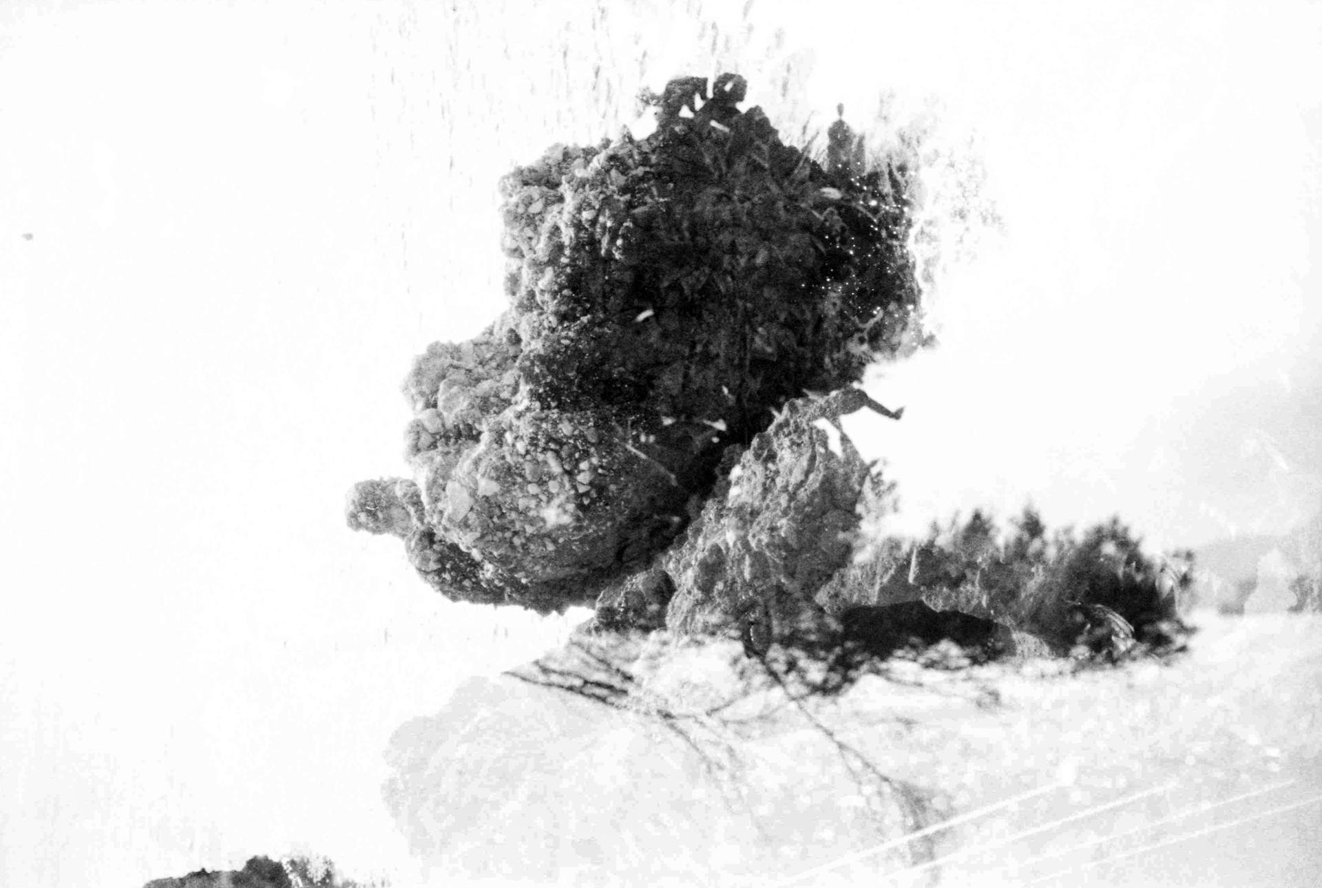 Explosion Of Tree