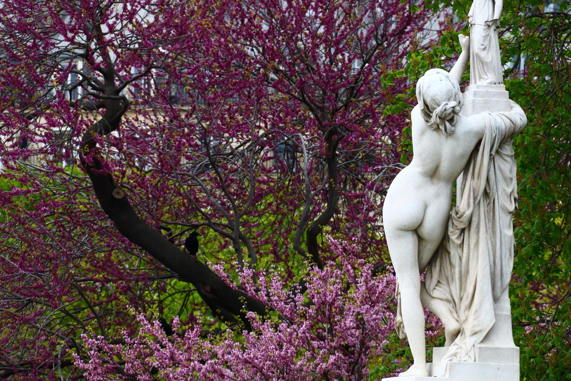 Dans le jardin des tuileries
