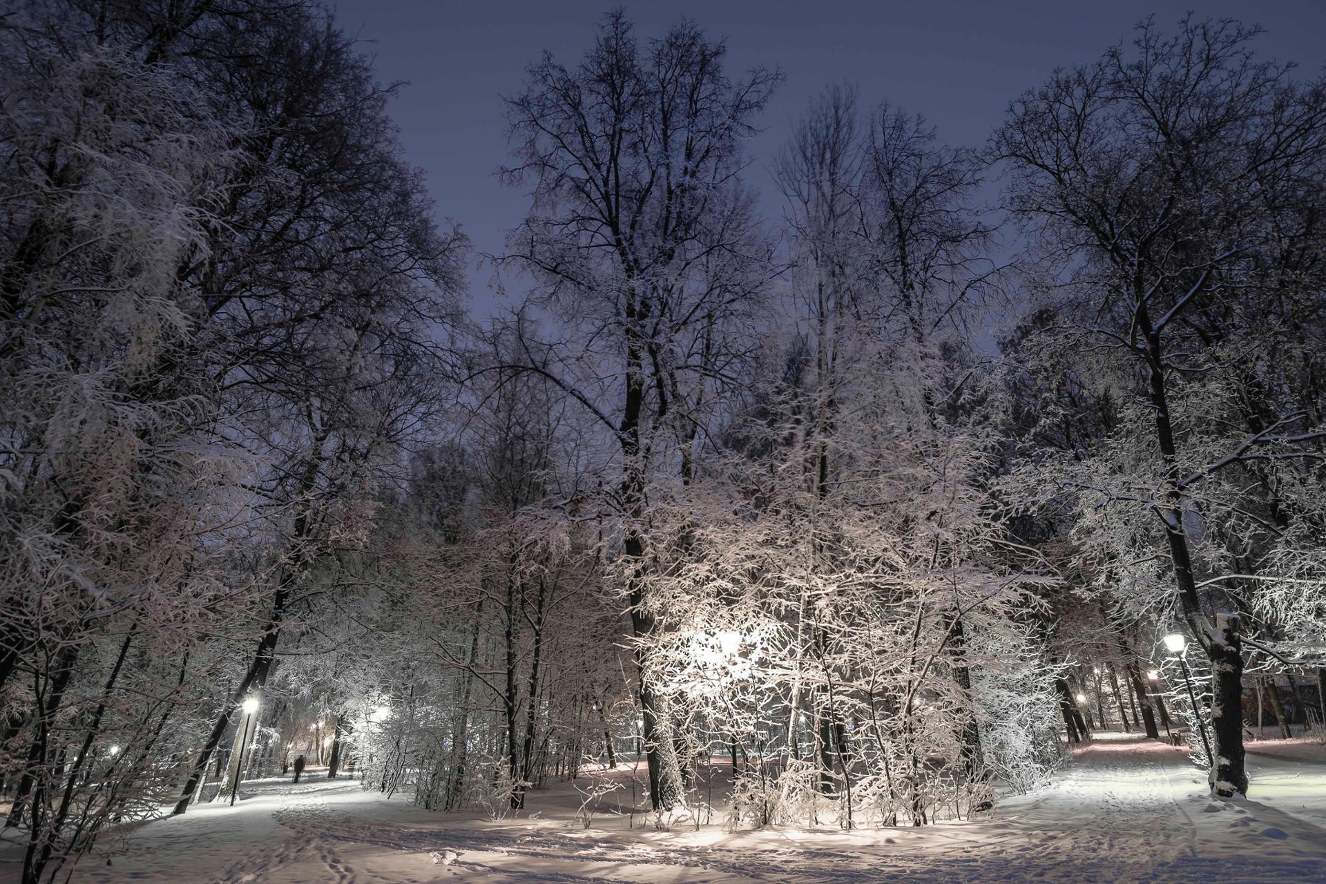 Frozen Forest, Nijni Novgorod - Russie-1188.jpg