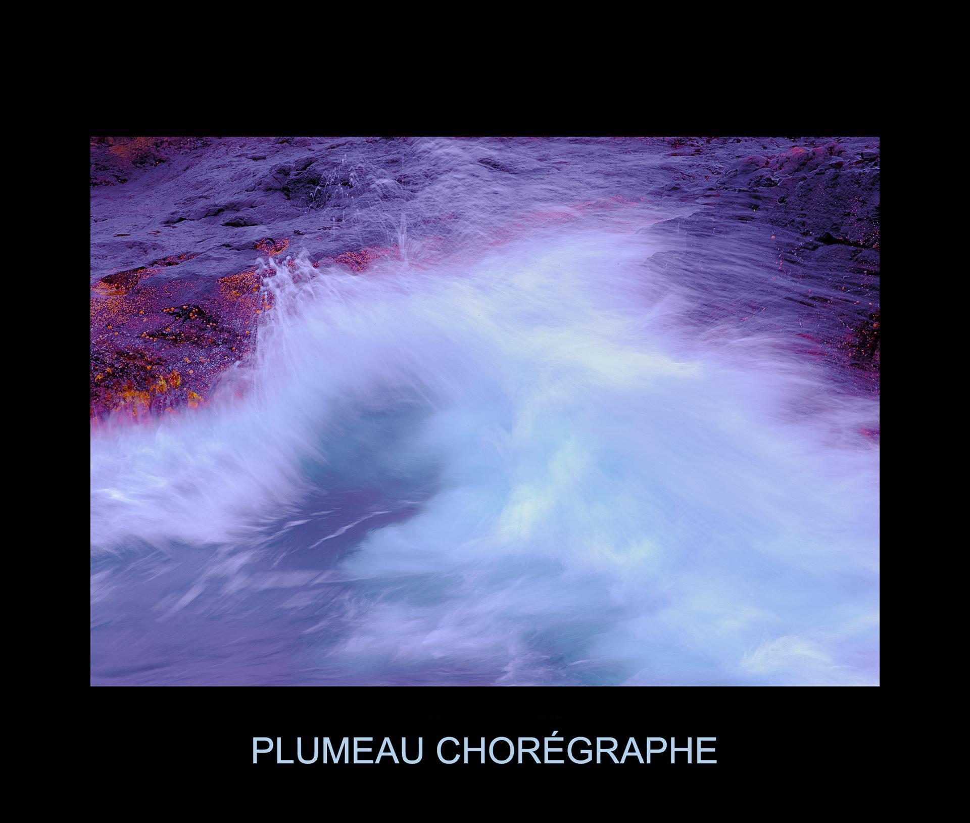 PLUMEAU CHORÉGRAPHE