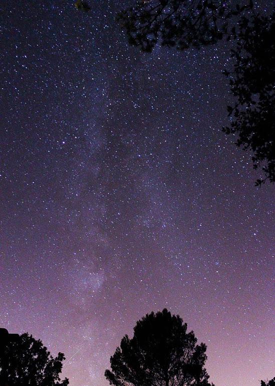 MilkyGauduinP.jpg