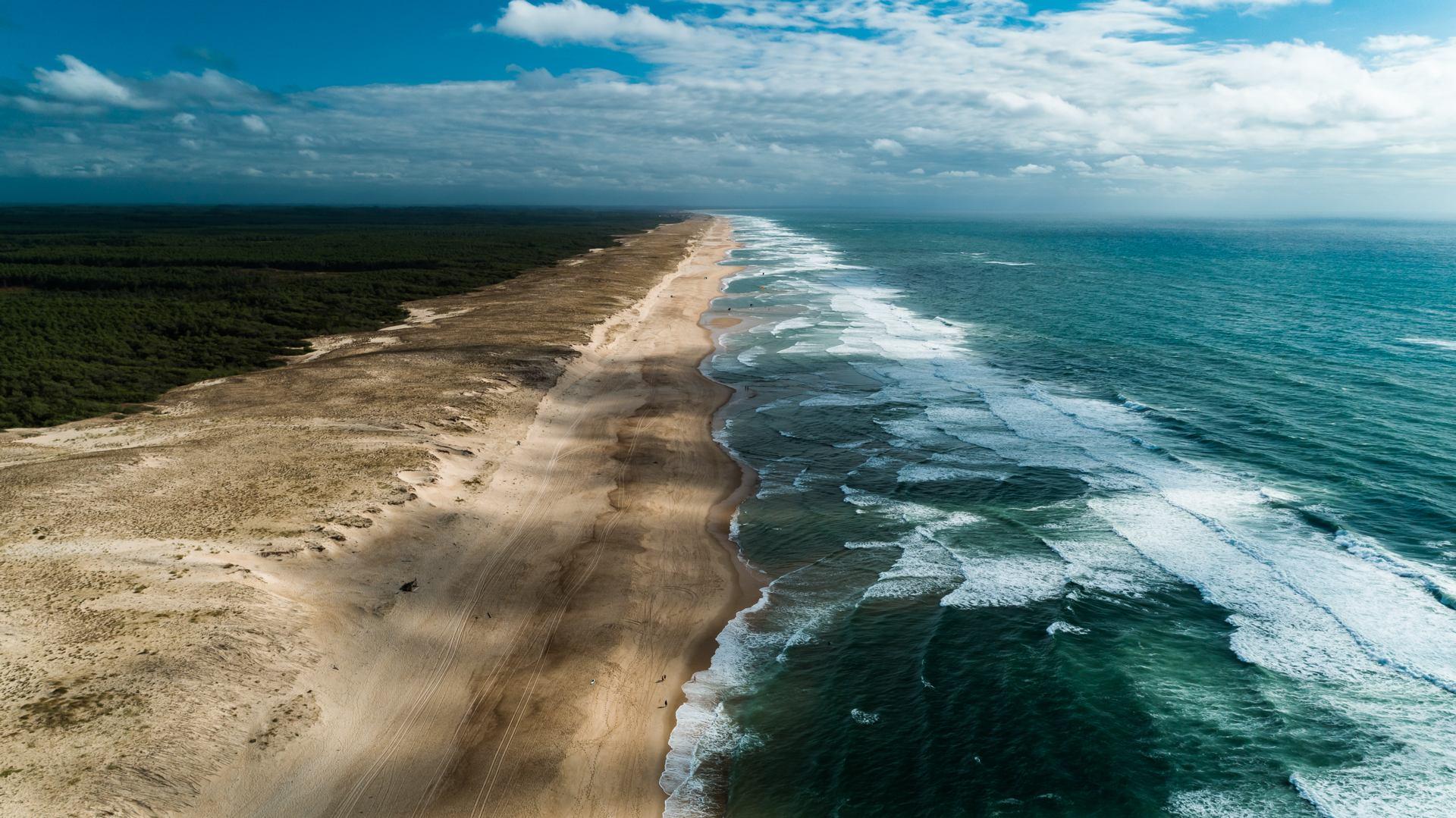 L'océan, une plage, des pins, des hommes.jpg
