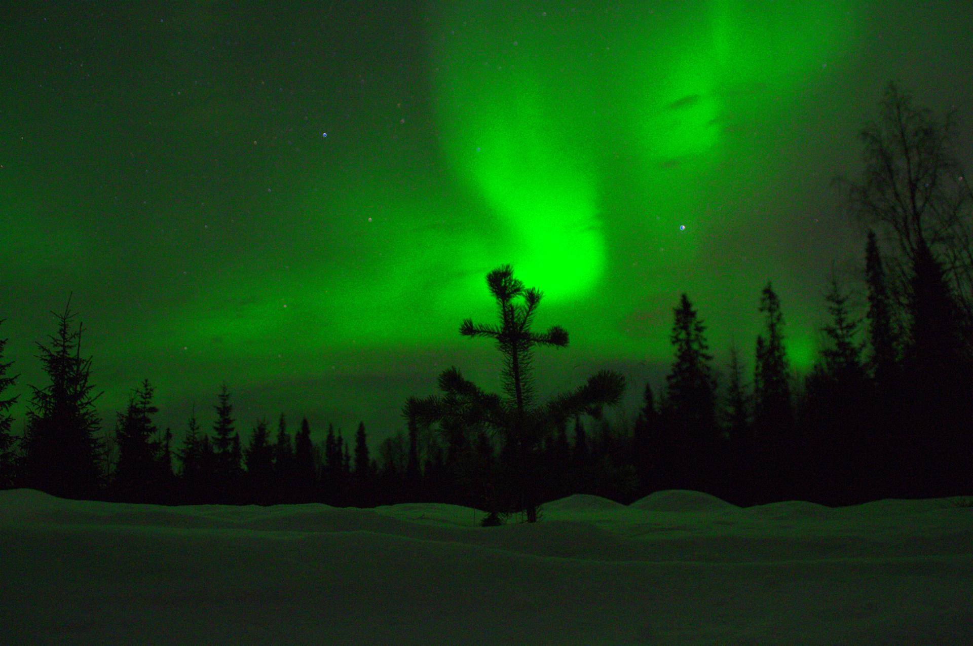 Northern light-winter in North Lapland