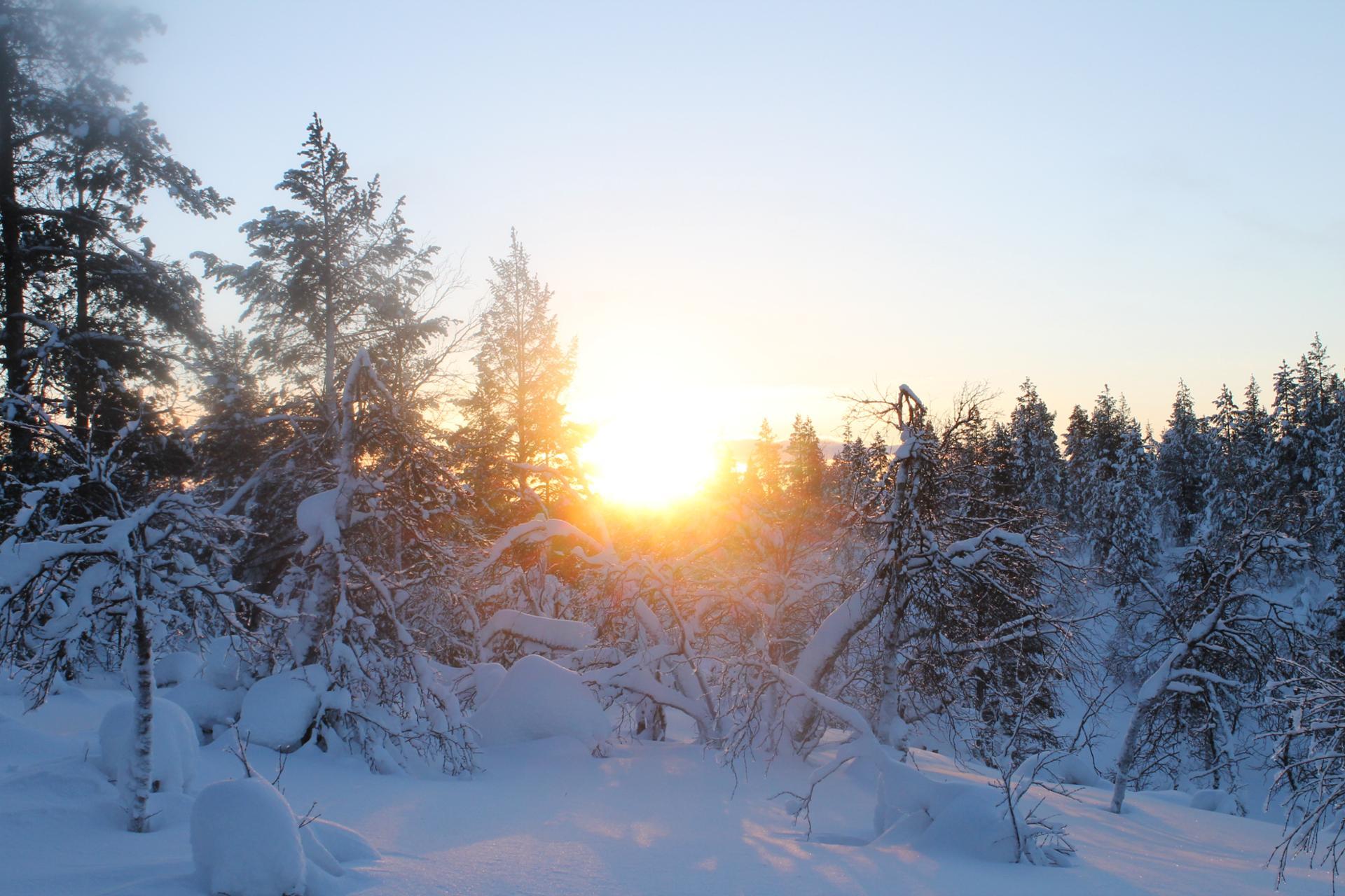 Sunset @ Urrho Kekkonen National Park