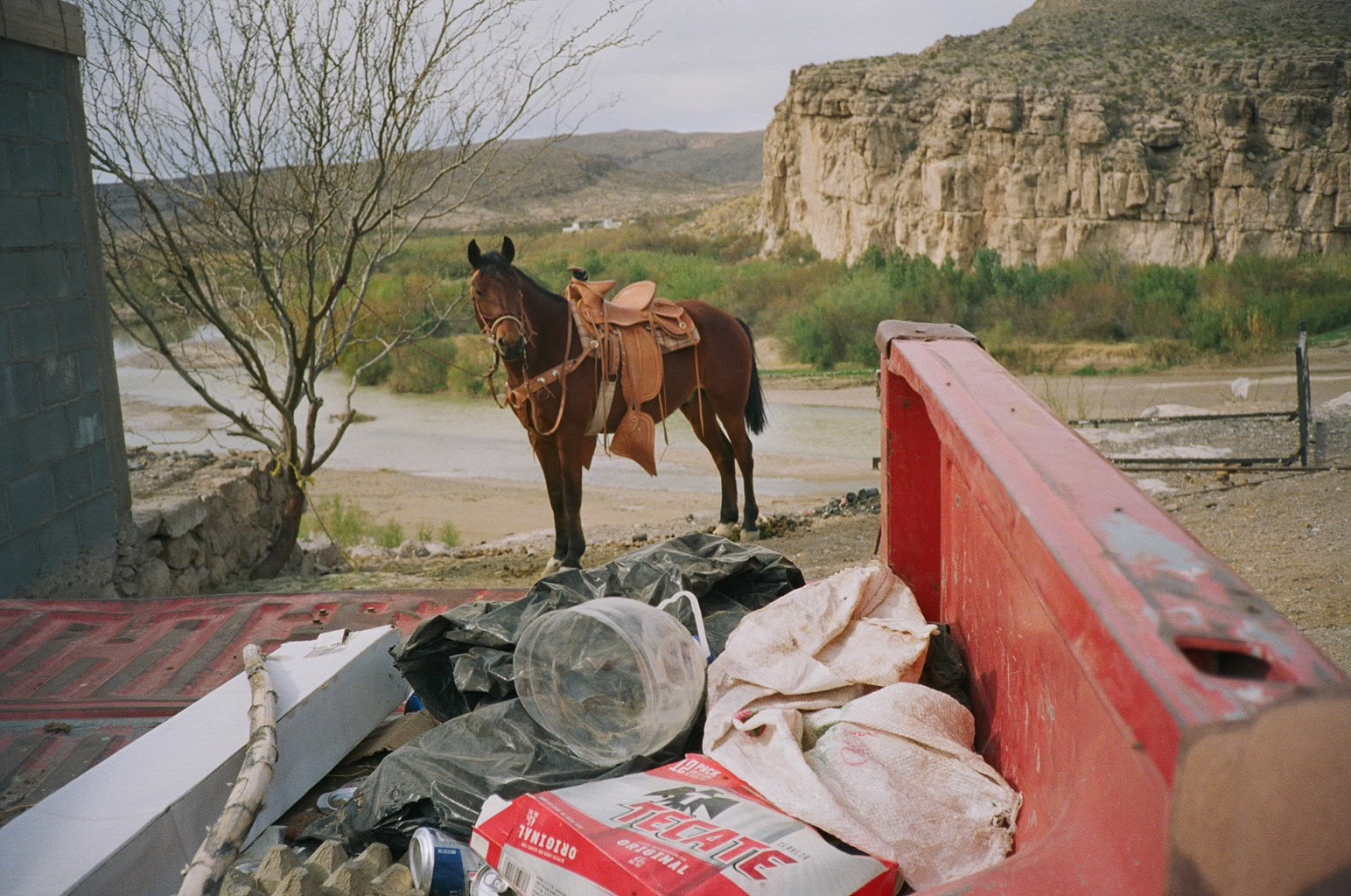 The Horse of Boquillas, Mexico, 2017