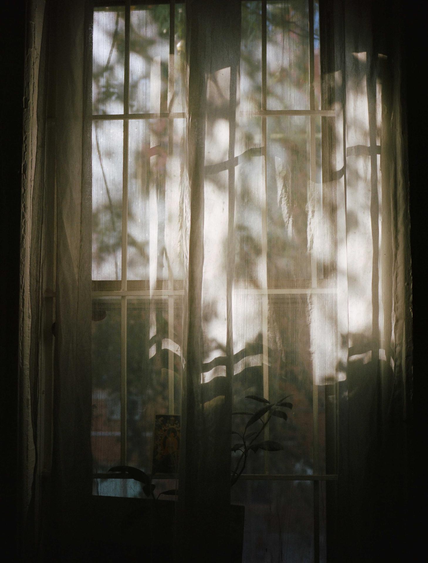 NY Window