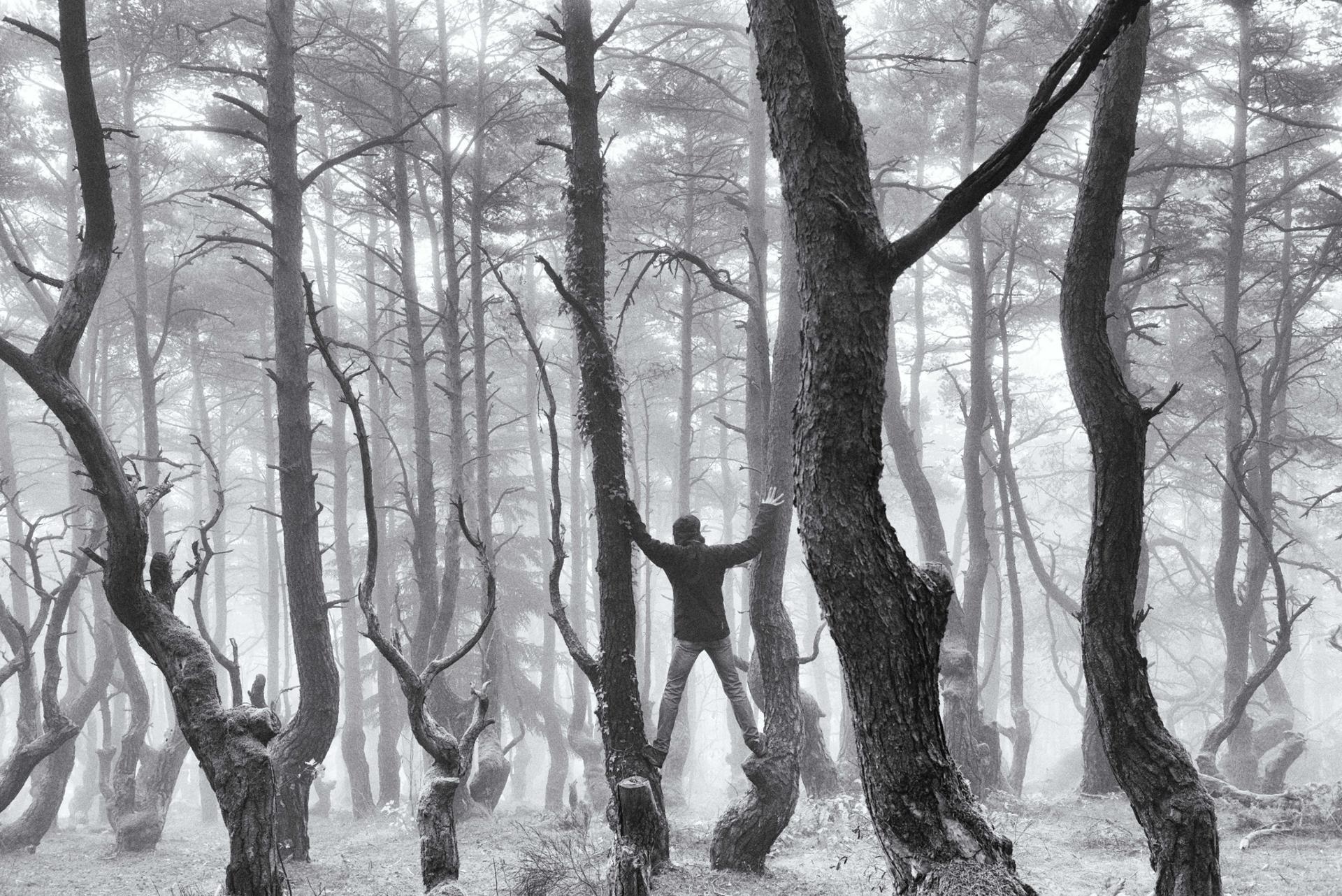 mist or myst... ?
