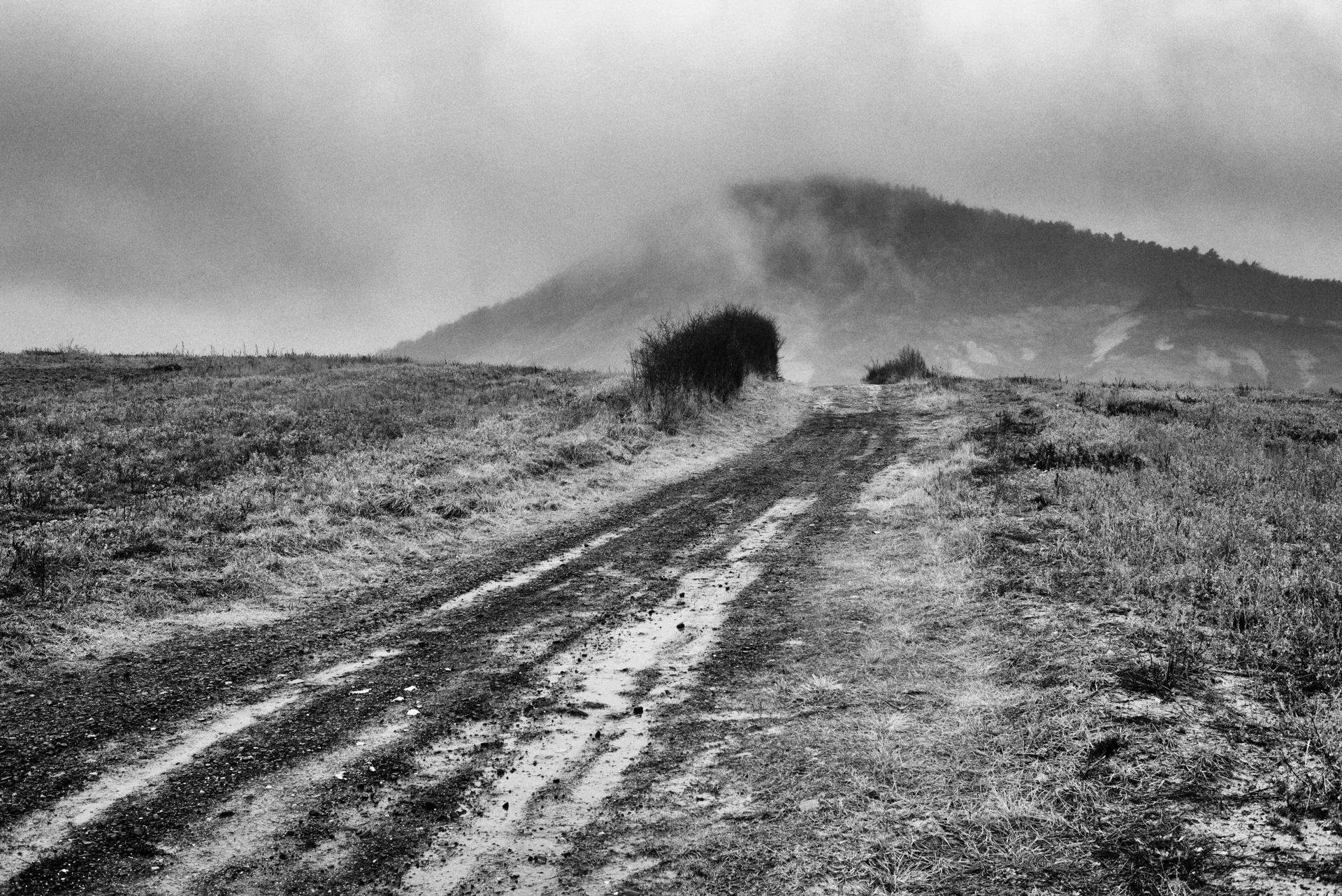 misty (gris)