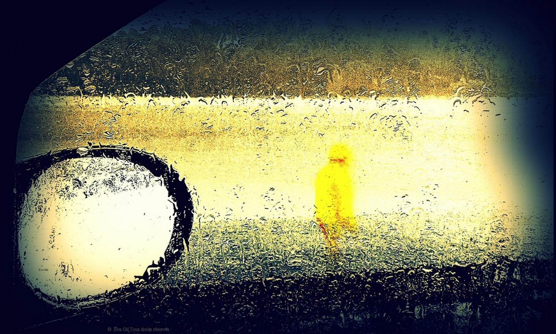 Le Ciré jaune ...