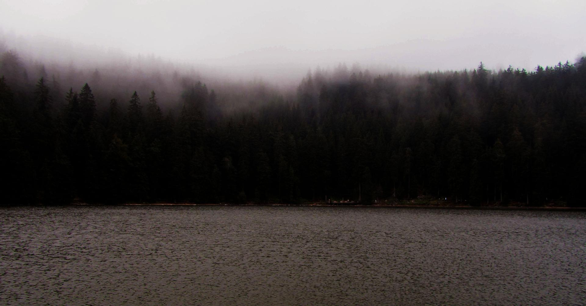Behind The Lake The Black Forest