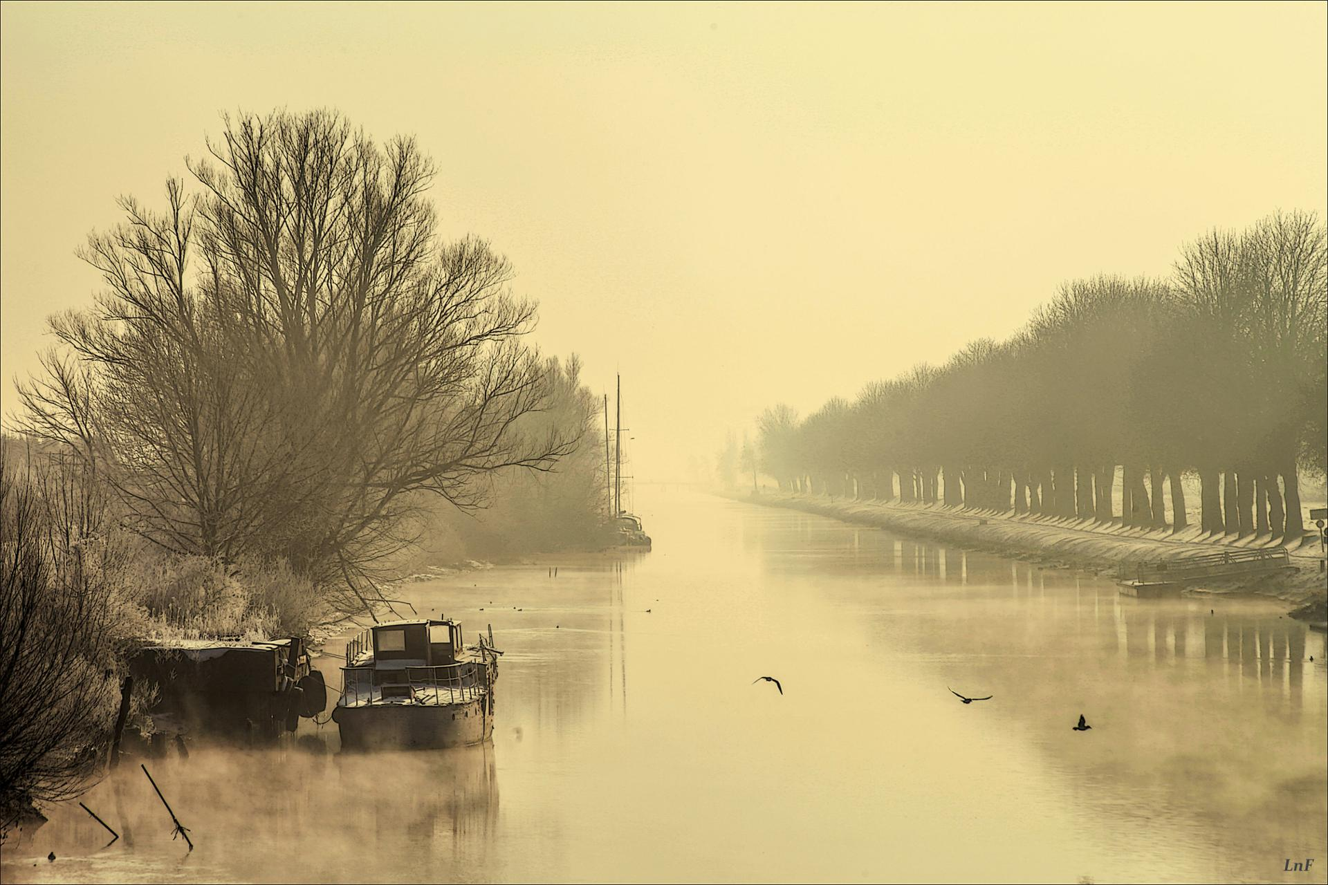 brume sur le canal
