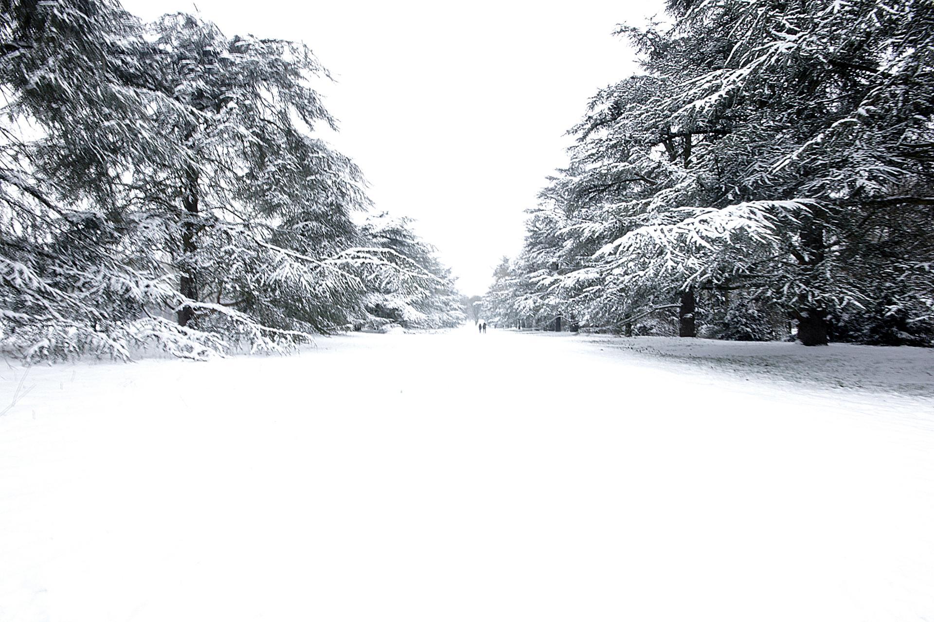 White Alley.jpg