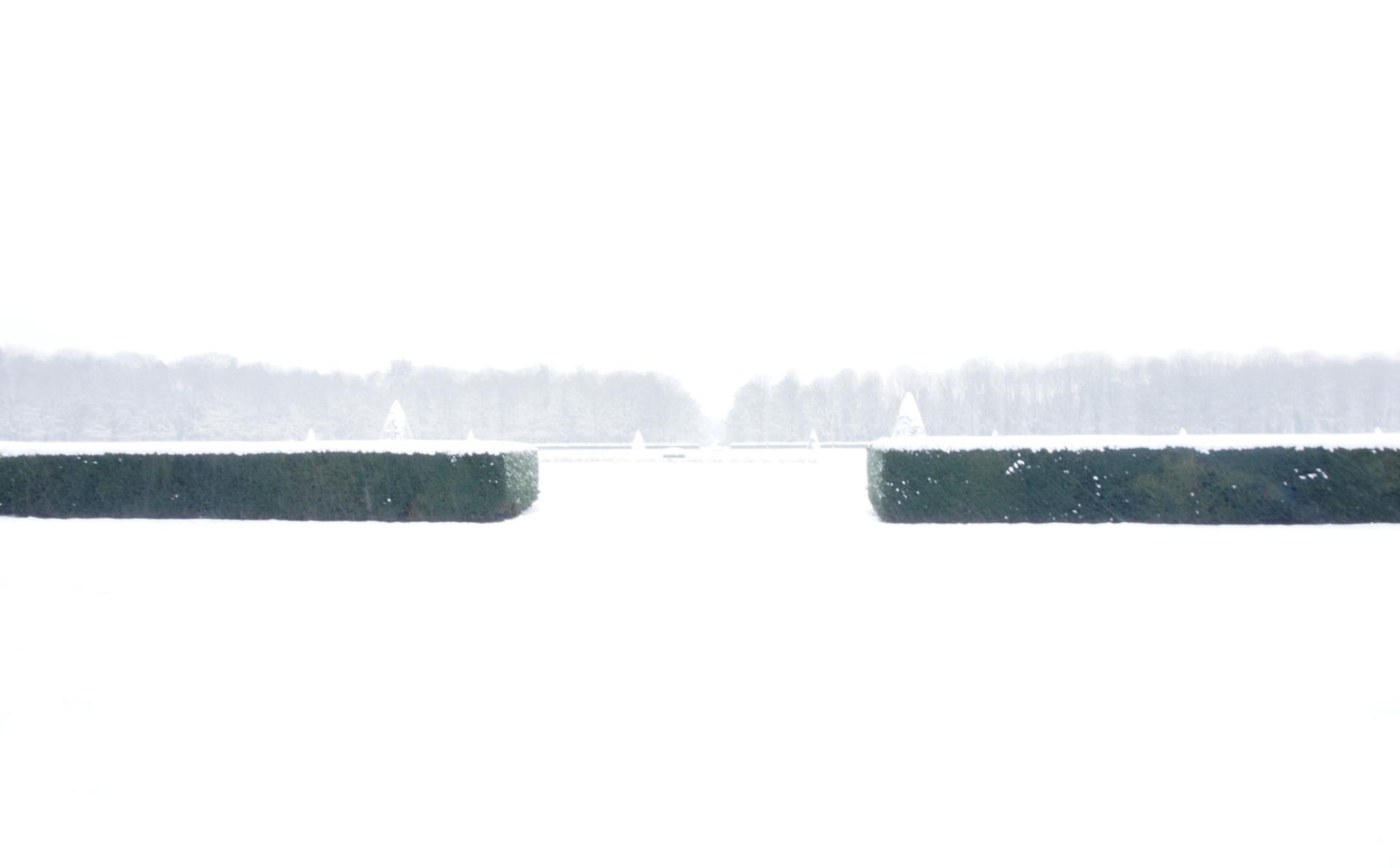 Rothko nocolor.JPG