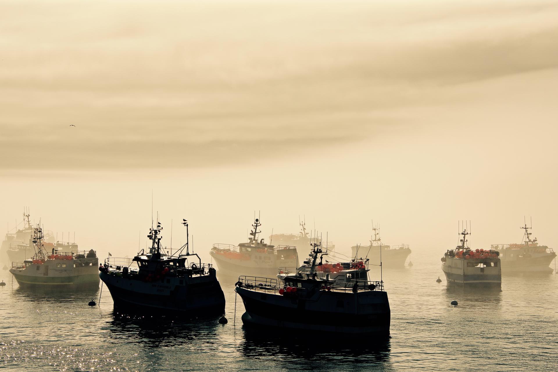 Brume sur la flotille