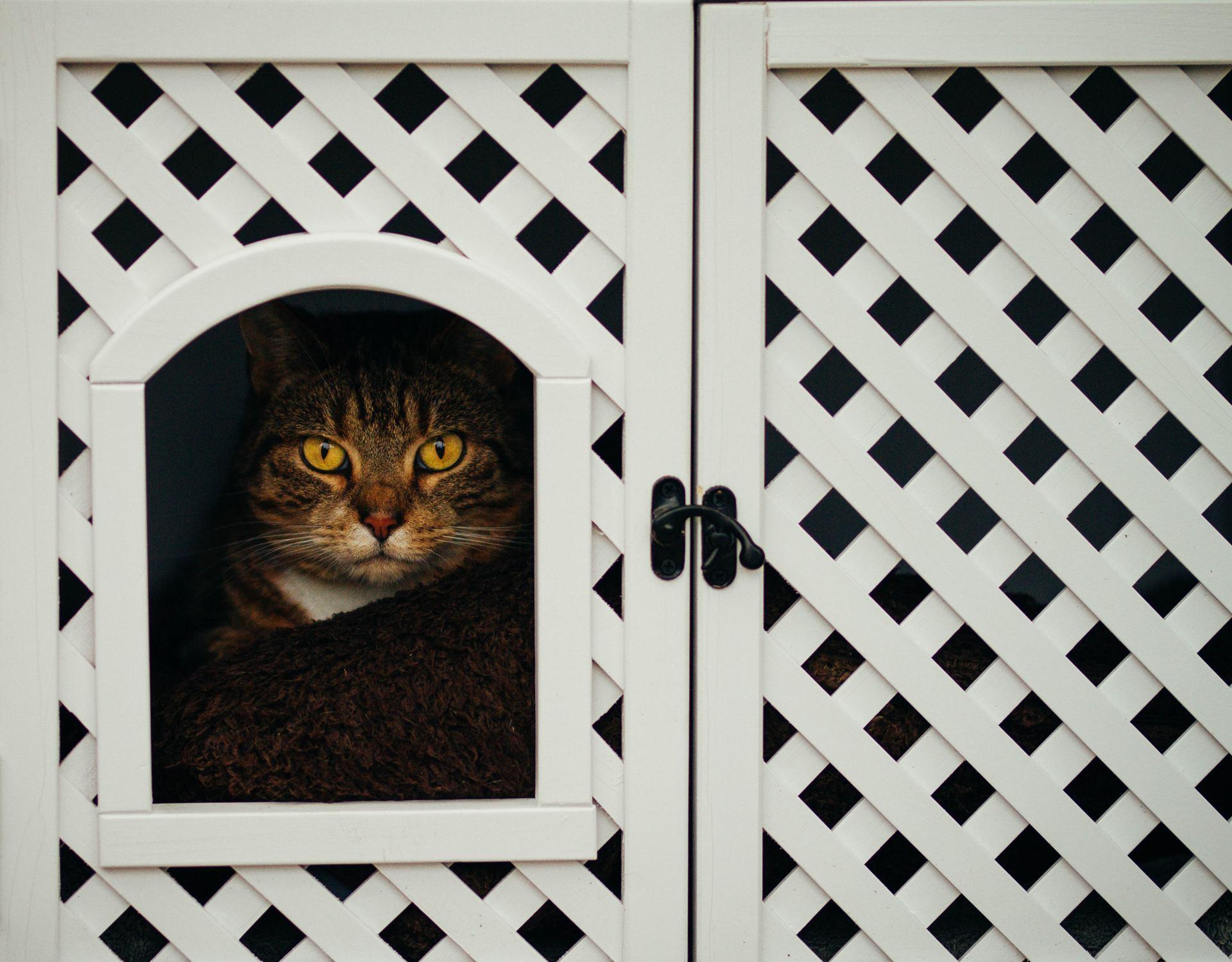 don't open de door