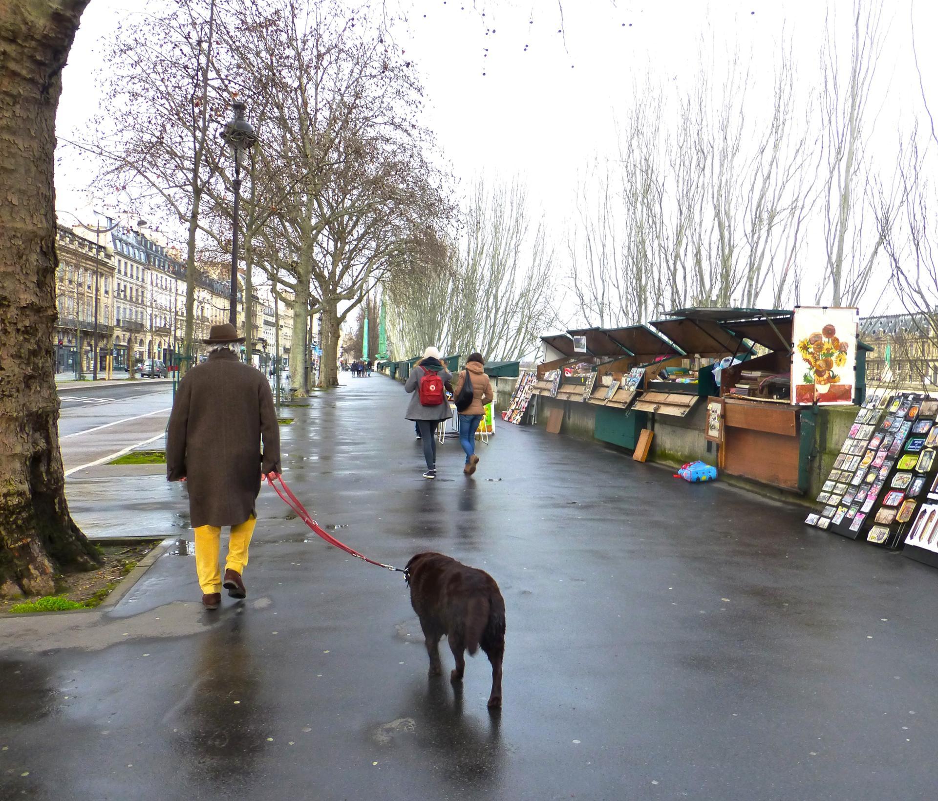 Promenade sur les quais de la Seine