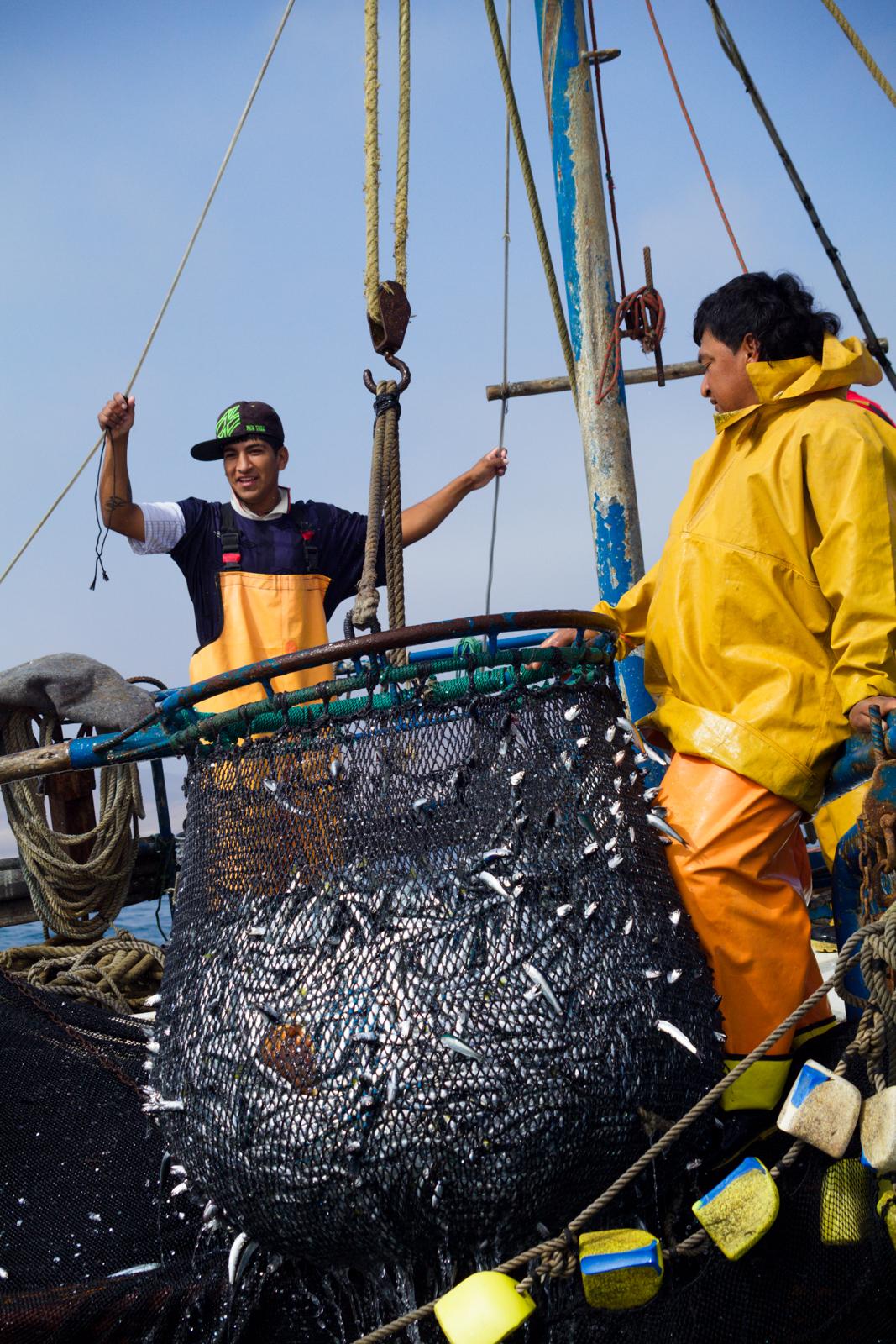 Paracas et ses pêcheurs