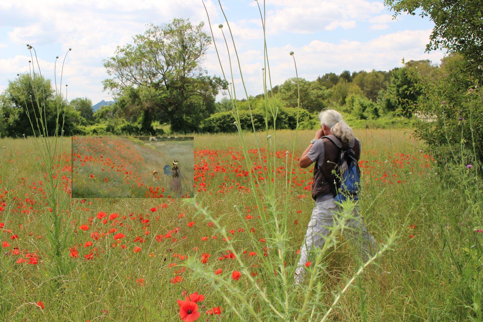 Le photographe entré dans le tableau de Monet pour rencontrer sa promeneuse