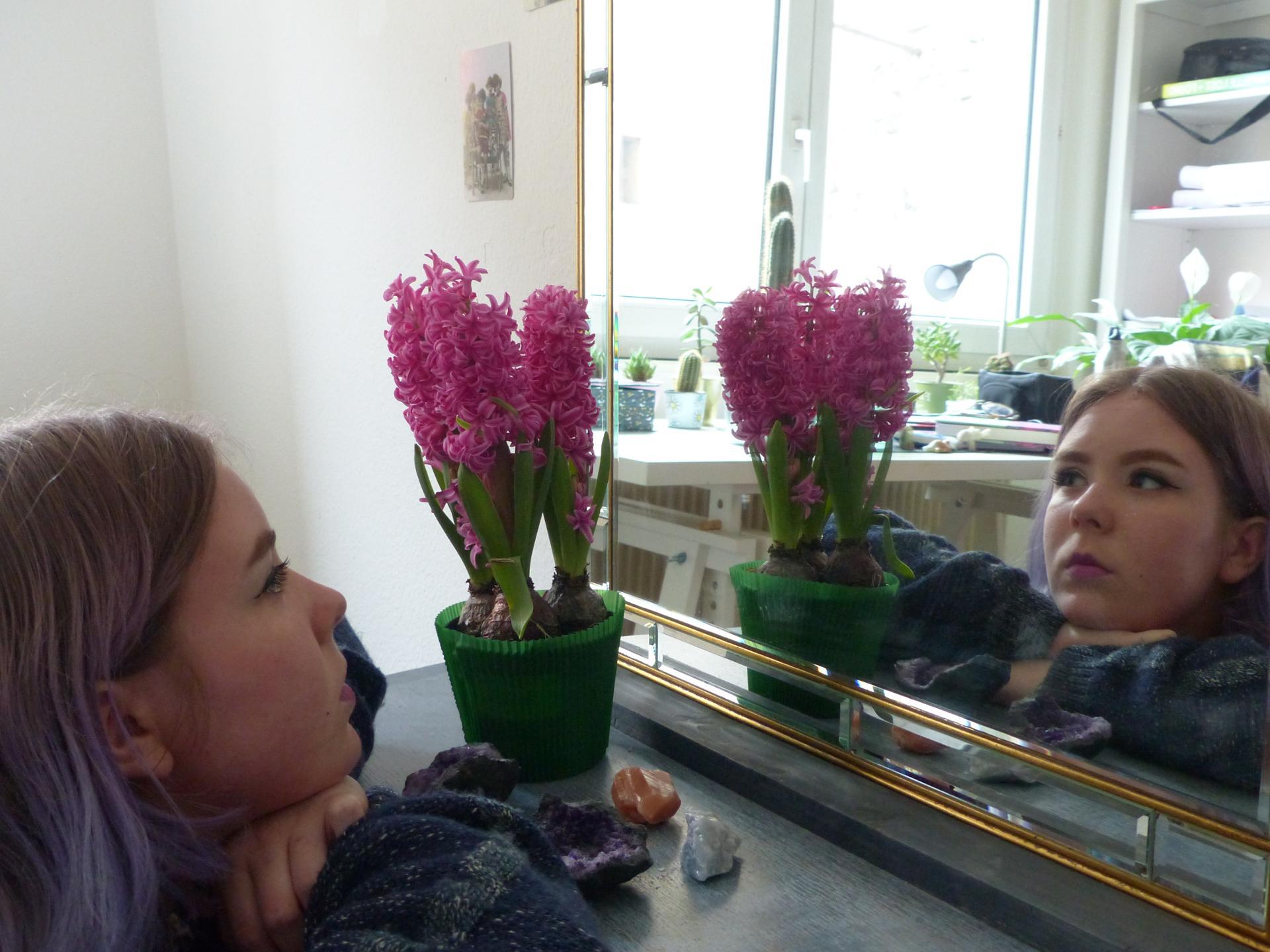 Alix et la jacinthe 2