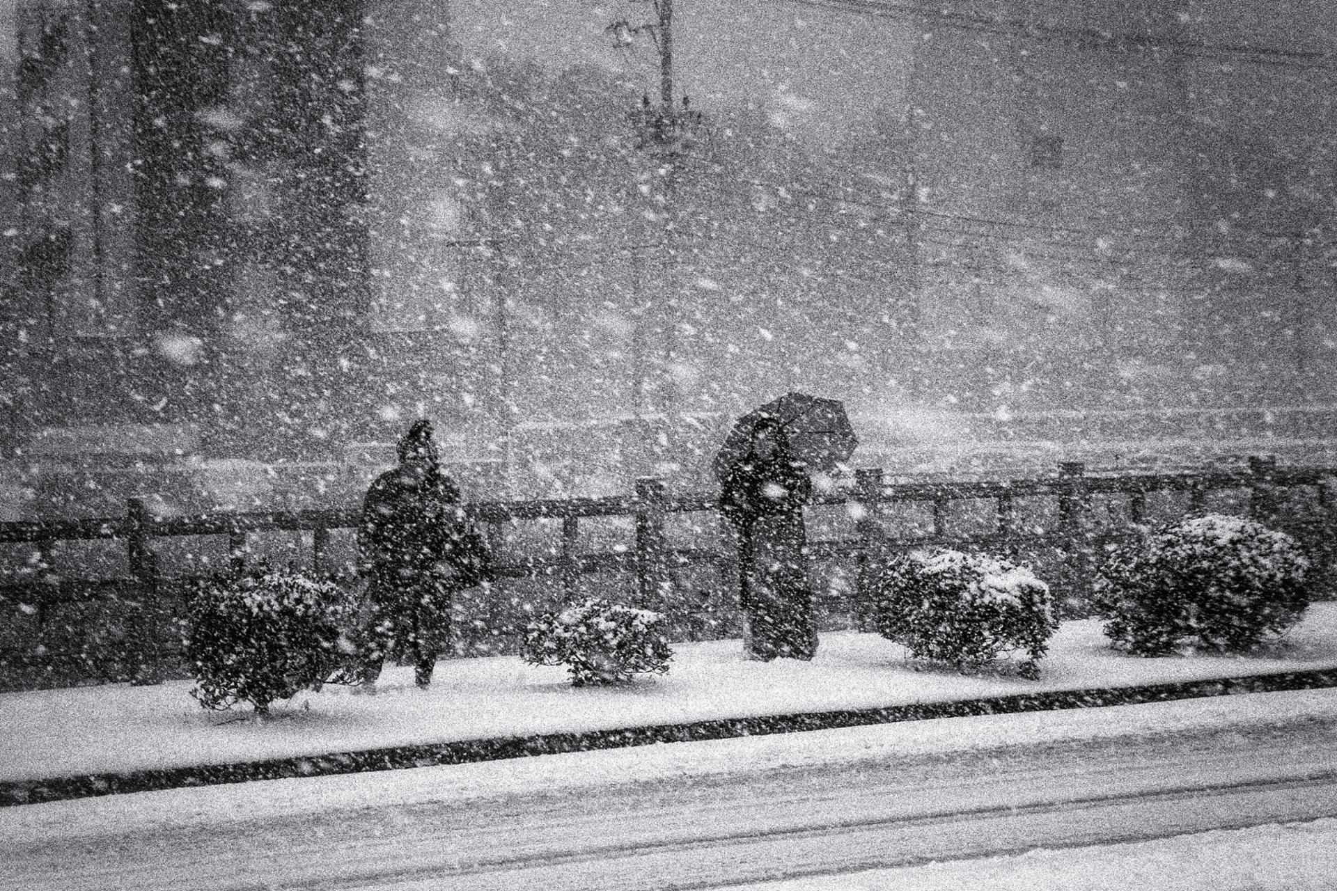 Quand la neige enrage