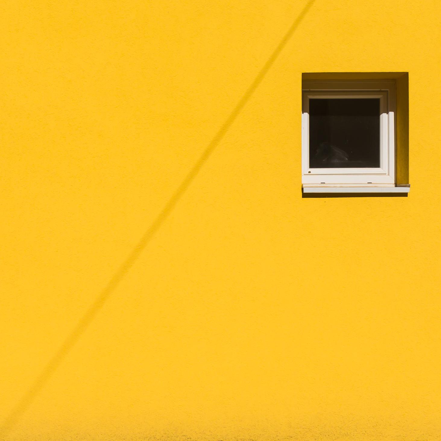 Carré jaune.jpg