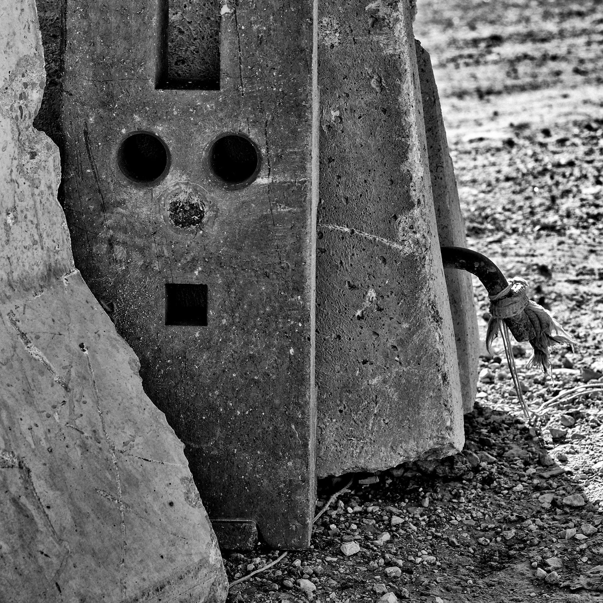 Le p'tit visage émanant du béton.