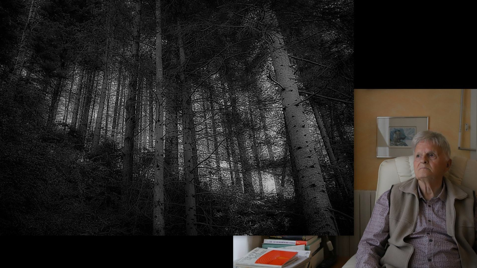 """La vie secrète des arbres"""