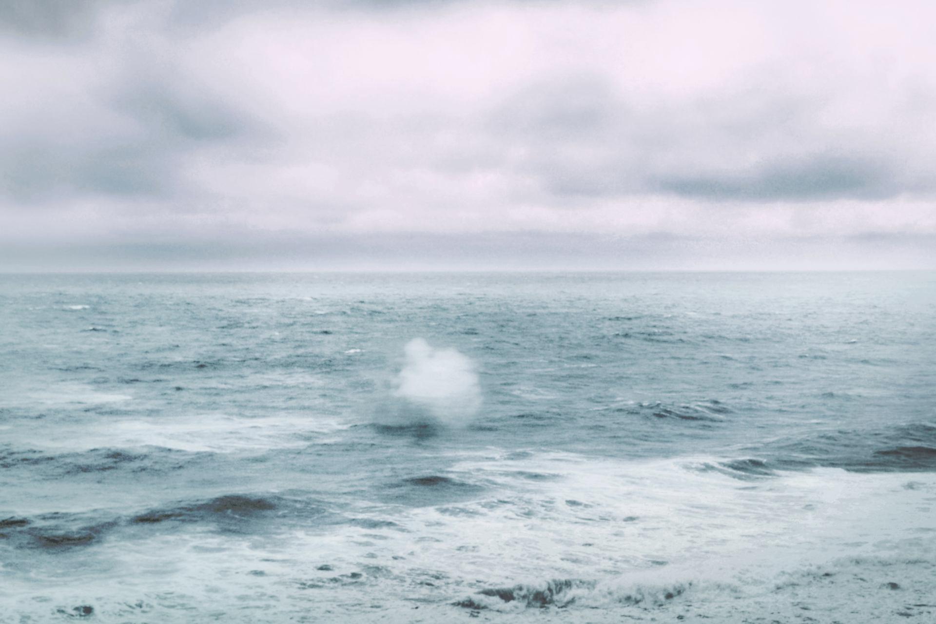Horizon - les rêves vagabonds
