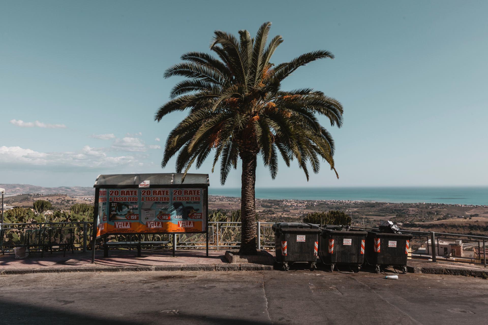 Un abri, un palmier et les poubelles, Sicile