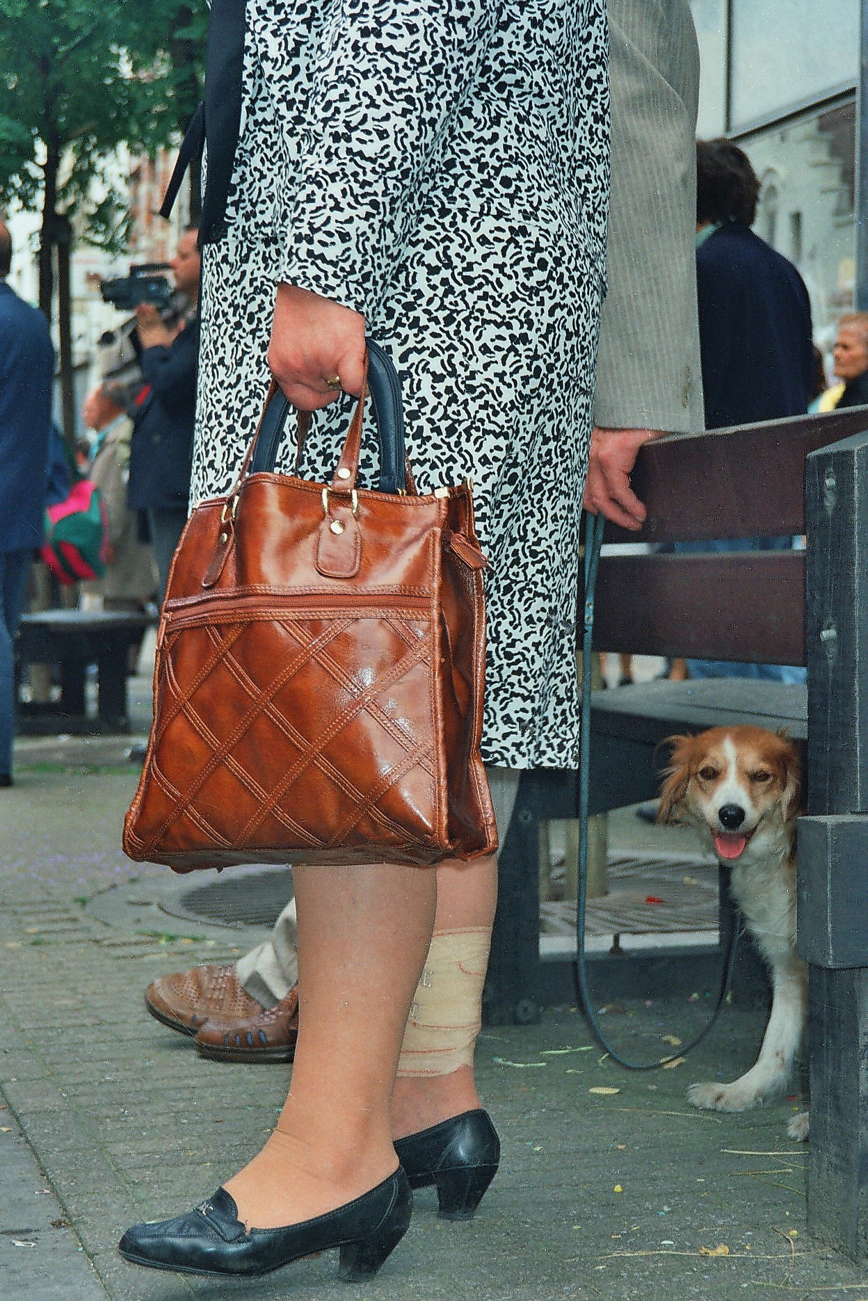 Elderly woman with bag and puppy