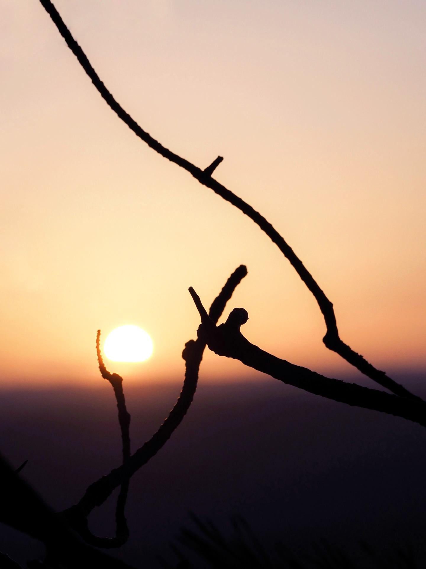 Caresse solaire