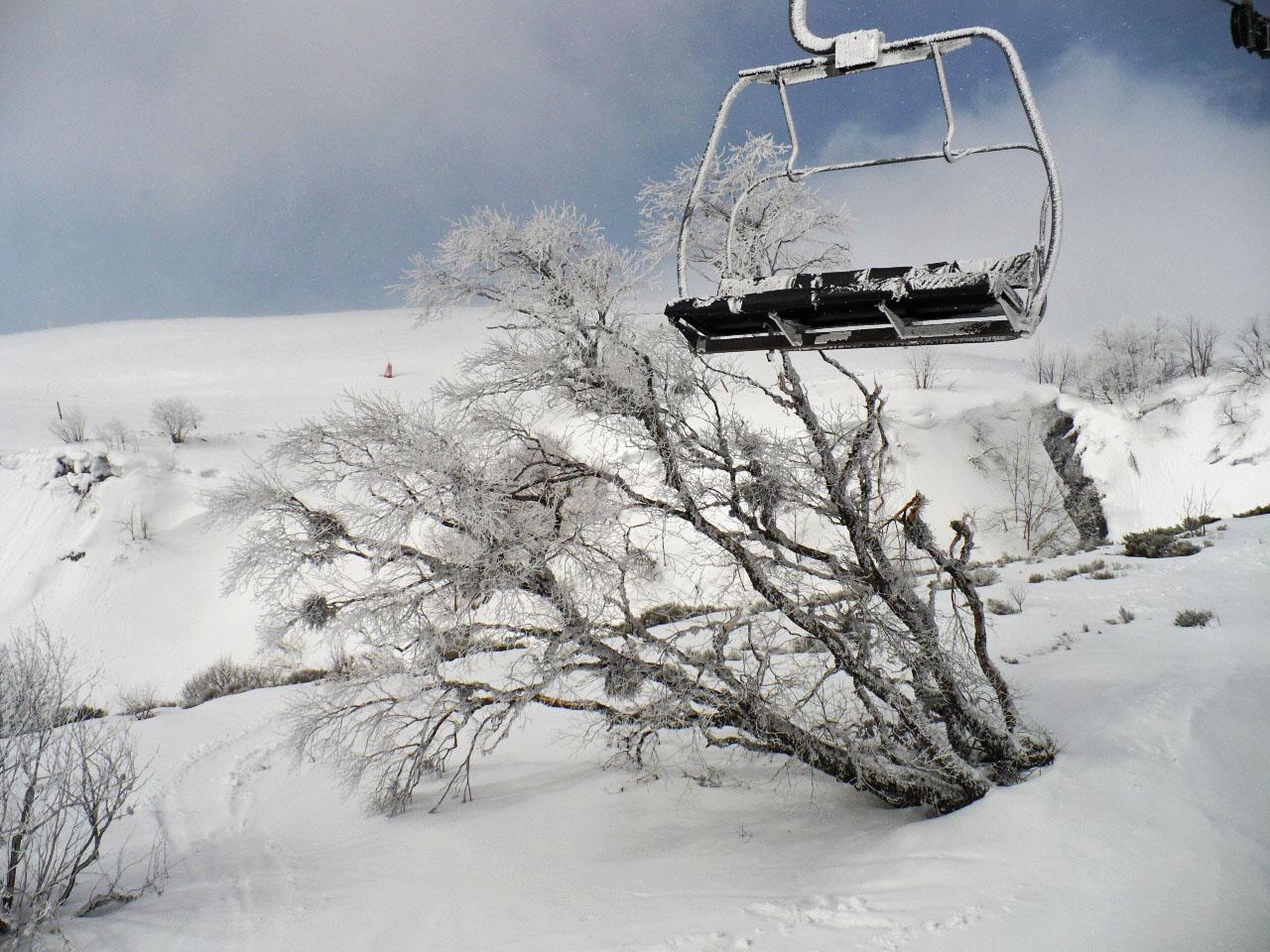 Ski 2010 (79)